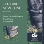 Decadance Crucial New Tune 30.08.2021